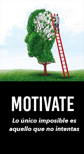Taller de motivacion